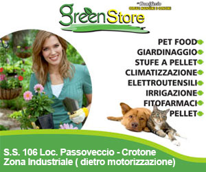 GREEN STORE CUBO