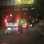 VIDEO | Madre denuncia figlio tossicodipendente, sgominata piazza di spaccio