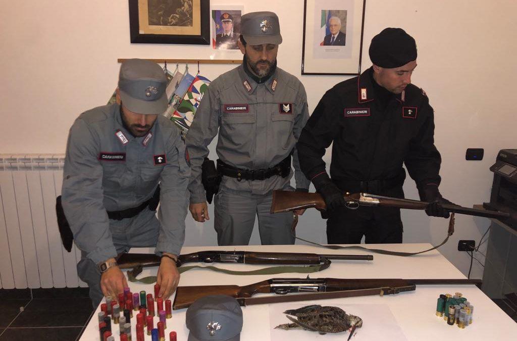 Fermati nel Parco della Sila con i fucili, denunciati tre cacciatori |  wesud News