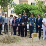 """VIDEO   Crotone, alla Vittorio """"Alfieri""""  un albero per non dimenticare la strage di Capaci"""
