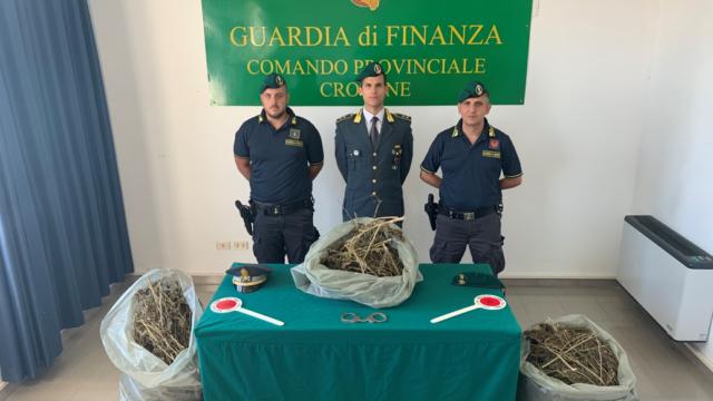 Sorpresi dalla Guardia di Finanza di Crotone  con 13 kg di marijuana, arrestati due crotonesi