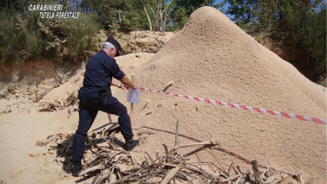 Intensificati nel vibonese i controlli dei carabinieri forestali, sanzioni e denunce