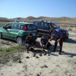 Rocca di Neto (KR), teneva illegalmente nella porcilaia 47 testuggini di specie protetta: denunciato