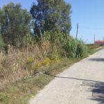 Crotone, i Consiglieri Comunali di ConSenso chiedono interventi  urgenti in  loc. Carpentieri