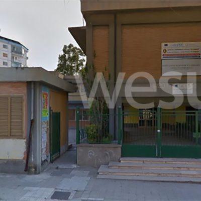 Crotone, topi a scuola: chiude per tre giorni l'Istituto Codignola