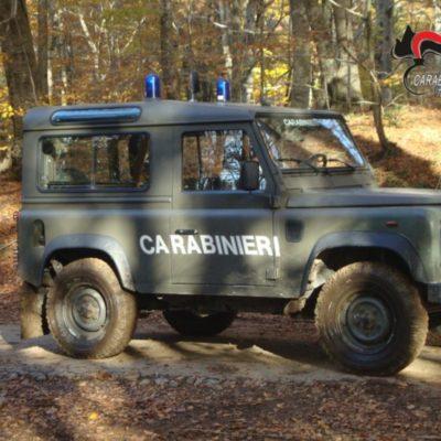 A caccia nel Parco regionale delle Serre nel comune di Cardinale: sequestrati 3 fucili e il relativo munizionamento