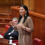 Coronavirus, Iole Santelli firma una nuova ordinanza: in Calabria torna l'obbligo delle mascherine  e tamponi per chi arriva da Grecia, Croazia, Malta e Spagna