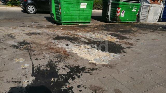 """Crotone, emergenza rifiuti: """"Adesso è l'ora"""" chiede insieme alla raccolta della spazzatura il lavaggio delle strade e dei bidoni della spazzatura"""""""