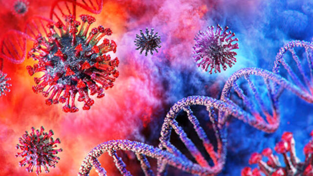 Coronavirus, 334 nuovi casi oggi in Calabria: 41 i positivi nel Crotonese